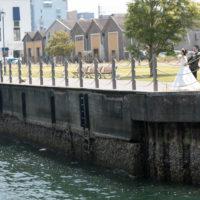 かんたん港園撮影例