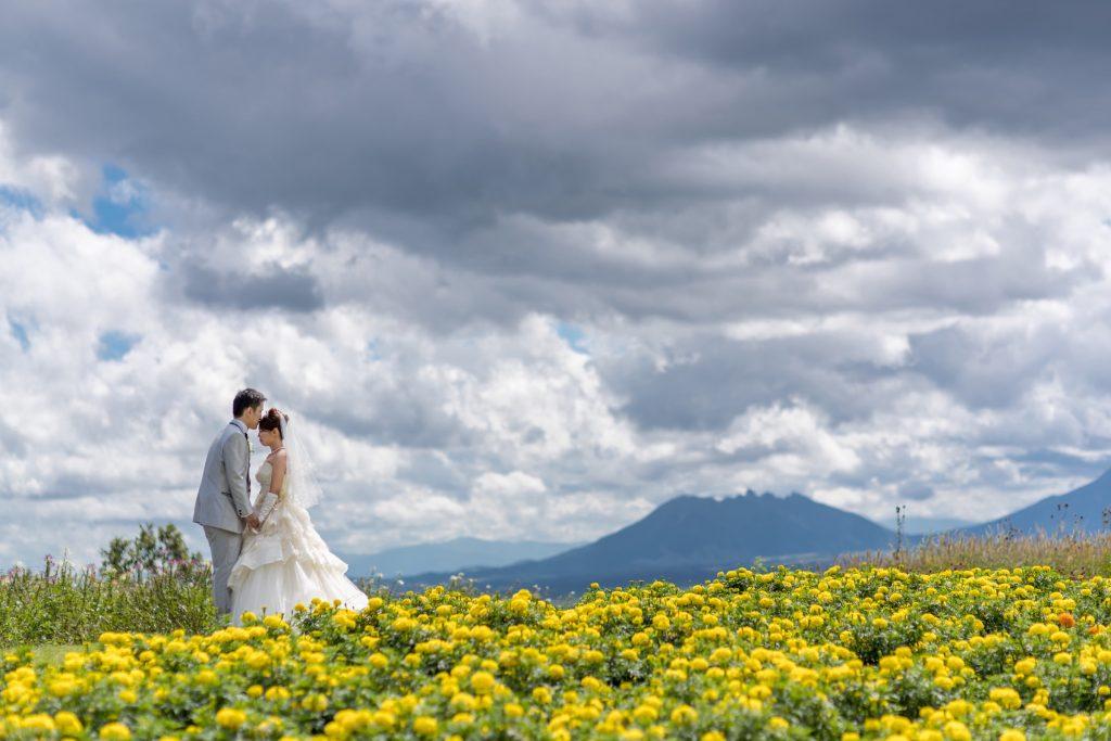 白ドレス、花、の前撮りフォト