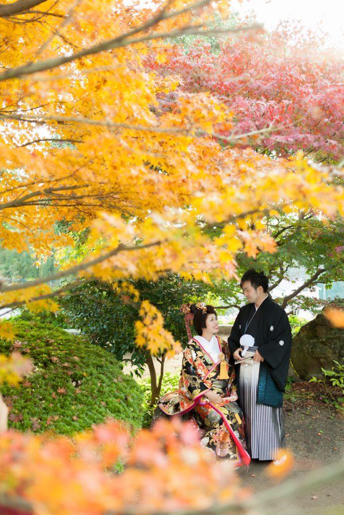 和かつら、紅葉、の前撮りフォト