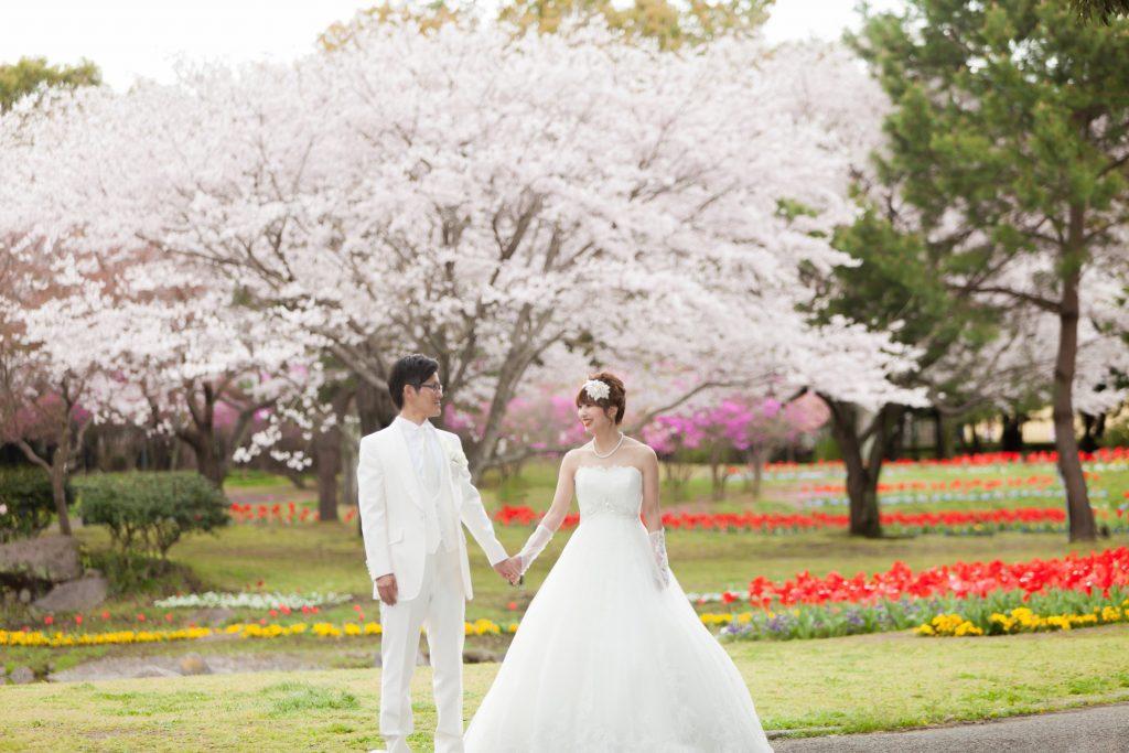 白ドレス、桜、季節の花、の前撮りフォト