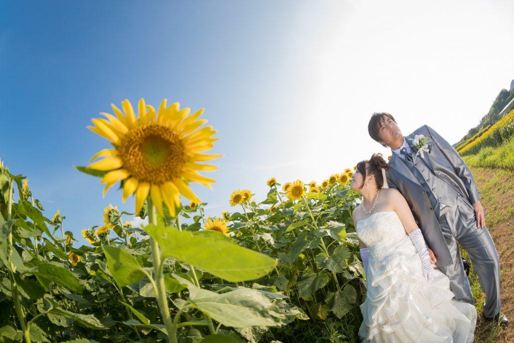 白ドレス、青空、花、の前撮りフォト