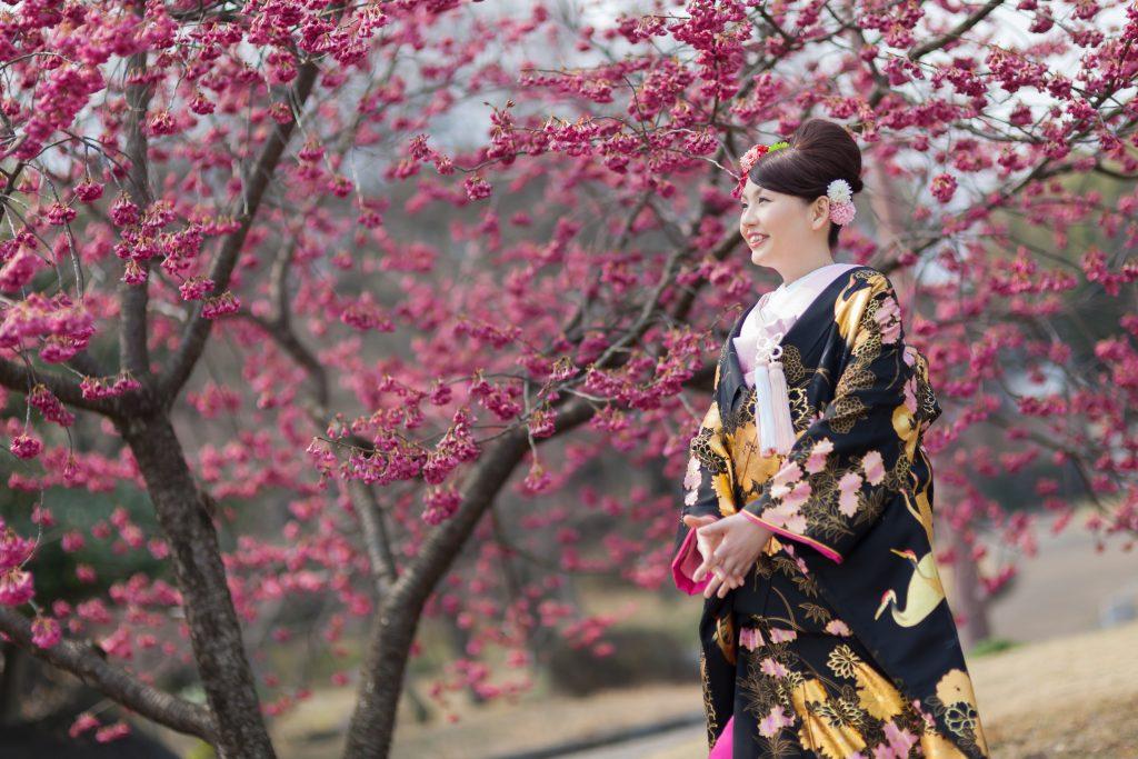 中部エリア 別府南立石公園(03月19日2014年 (2))