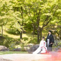 渓石園撮影例