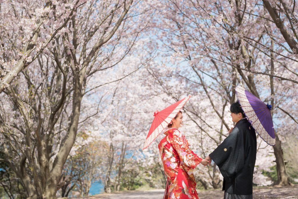 色打掛、和小物、桜、の前撮りフォト