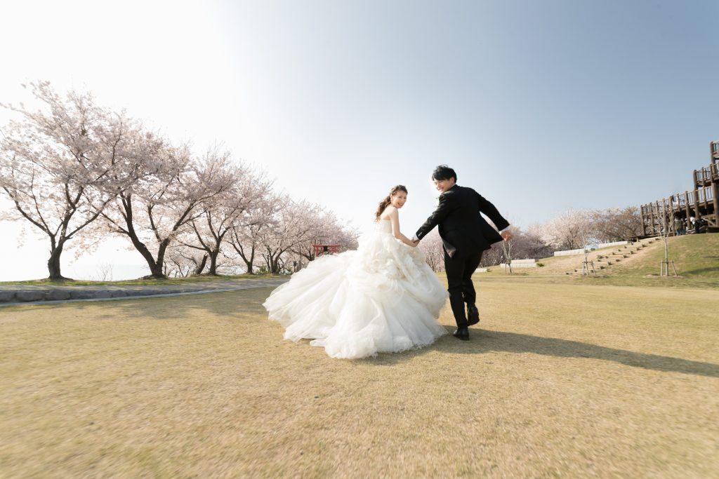 白ドレス、桜、の前撮りフォト
