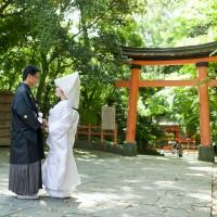 ロケーション「宇佐神宮」の撮影例