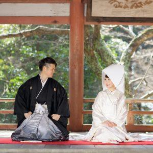中部エリア 柞原八幡宮(02月08日2015年)