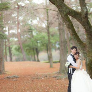 中部エリア 別府公園(11月29日2015年)
