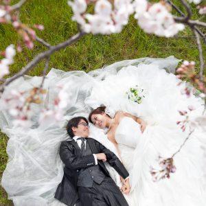 中部エリア 大野川河川敷(03月31日2015年 (1))