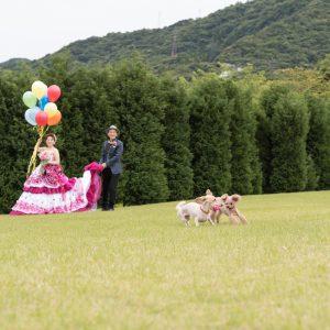 中部エリア 杉乃井ホテル内(06月12日2017年)