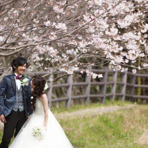 その他(04月02日2016年 (2))