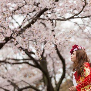 中部エリア 別府南立石公園(04月04日2016年 (1))