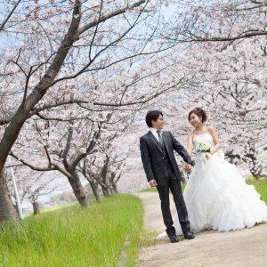 中部エリア 大野川河川敷(03月31日2015年)