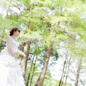 中部エリア 別府公園(05月06日2014年(1))