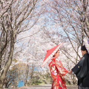 北部エリア 粟嶋神社・公園(4月03日2018年)