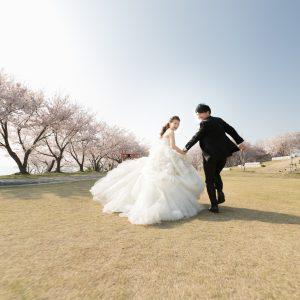 北部エリア 粟嶋神社・公園(4月03日2018年(4))